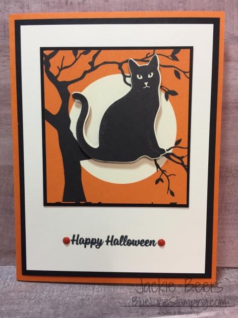 Stampin' Up! Spooky Cat, Jackie Beers, stampinup spooky cat, jackiebeers