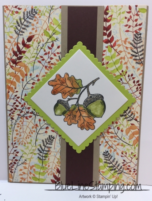Stampin' Up! County My Blessings, stampinup county my blessings, acorns, Jackie Beers