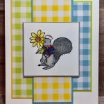 Gingham Squirrel