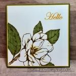 Magnolia Hello