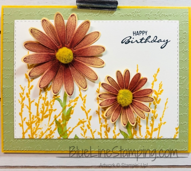 Stampin' Up!, Country Road, Daisy Lane, Daisy punch, Jackie Beers