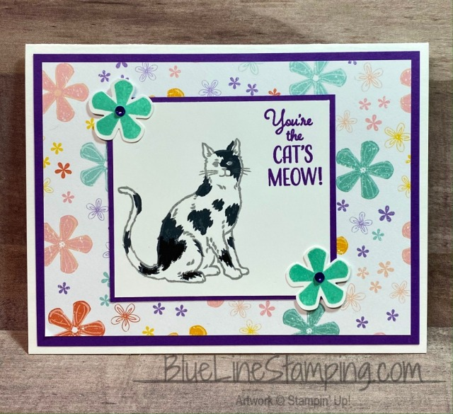 Stampin' Up!, Nine Lives, Pleased As Punch, Retro, Jackie Beers