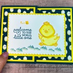 Critters, Stampin